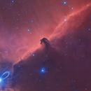 IC 434 Horse Head,                                MQuinn