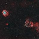 IC443 and NGC 2174 - Jellyfish and monkey head - HOORGB,                                Volker Gutsmann