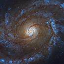 M100 Galaxy by Hubble,                                Leo Shatz