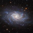 Messier 33 - Triangulum galaxy,                                Péter Feltóti