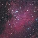 M16 - Eagle Nebula,                                Grahame