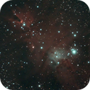 Cone Nebula (cropped),                                agostinognasso