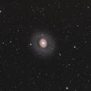 M94 LRGB,                                Barry Wilson