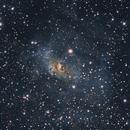 NGC 7635 Bubble Nebula,                                Mike Miller