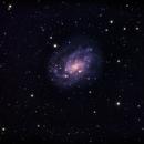 NGC 300,                                Martin Williams
