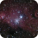 Christmas Tree cluster and Cone nebula,                                Fabio Zucconi