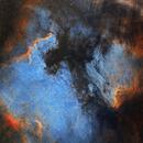 The North American and Pelican Nebulas,                                Ioan Popa
