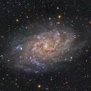 M 33 - Triangulum Galaxy (NGC 598),                                Ara