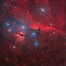 Horsehead Nebula Widefield,                                tonyhallas