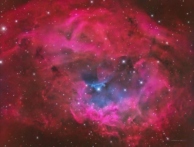 Lower's nebula (Sh2-261) in Hα-SII/OIII/OIII+rgb,                                Jose Carballada