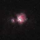 M42   The Orion Nebula,                                Tom Hitchen