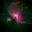 First lights - M42,                                Martin Weiss