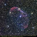Crescent Nebula,                                Michael Fürsatz