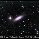 NGC 6503, Dwarf Galaxy in Draco, OSC, 25-26 June 2016,                                David Dearden