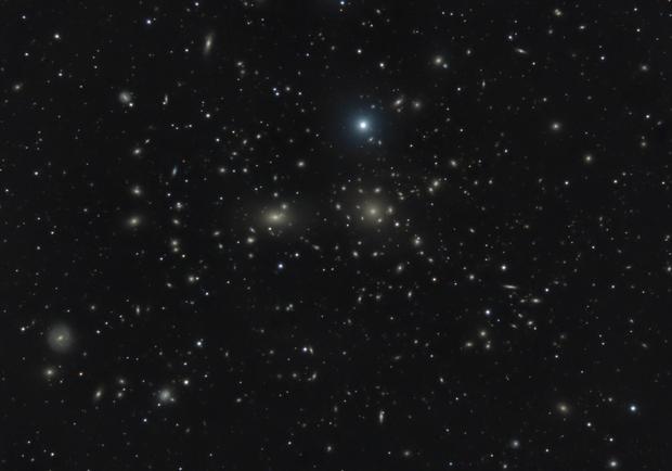 Coma Cluster,                                Riedl Rudolf