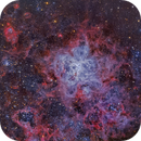Tarantula nebula,                                Tony