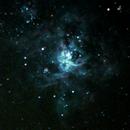 Tarantula Nebula,                                Erick Couto