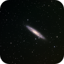 NGC 253 - The Sculptor Galaxy,                                Insight Observatory