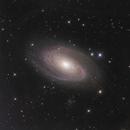 M81 LHaRGB with a hint of IFN,                                John D (jaddbd)