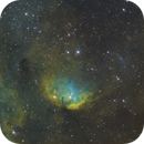 Tulip Nebula Medium Field In SHO,                                mikefulb