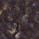 IC1318 - Sadr region - SHO,                                Daniel Fournier