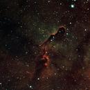 IC 1396 Elephant Trunk Nebular,                                Anders Quist Hermann