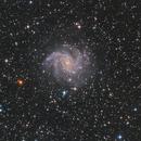 NGC 6946 Fireworks Galaxy,                                Jens Zippel