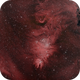 NGC 2264 - Cone Nebula and Christmas Tree Cluster,                                ruccdu