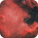 NGC 7000 North America Nebula,                                dkuchta5