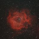 Rosette Nebula,                                rodeen