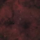 IC 1396 - The Elephant's Trunk Nebula,                                austinstephens