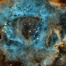 Rosette Nebula Core,                                Don Curry
