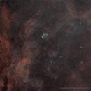 NGC 6888,                                Steve Yan