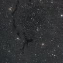 Barnard 150 - Seahorse Nebula,                                Hasan Oktay ÖNEN