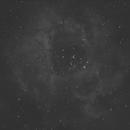 Rosette Nebula with Triad Ultra,                                David Johnson