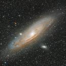 M31,                                João Berbereia