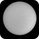 Sol 14-5-2020 Ha & Cak,                                Steve Ibbotson