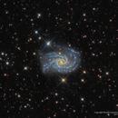 NGC 2835: The Snake's Head,                                Russ Carpenter