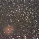 Cocoon Nebula,                                Randall Evans