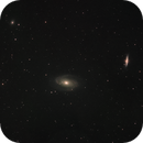 M81 Bode's Galaxy in LHaRGB,                                Padraic Moran