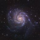 The Pinwheel Galaxy,                                Gabe Shaughnessy