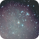 First try at ngc 2244,                                Neil Emmans
