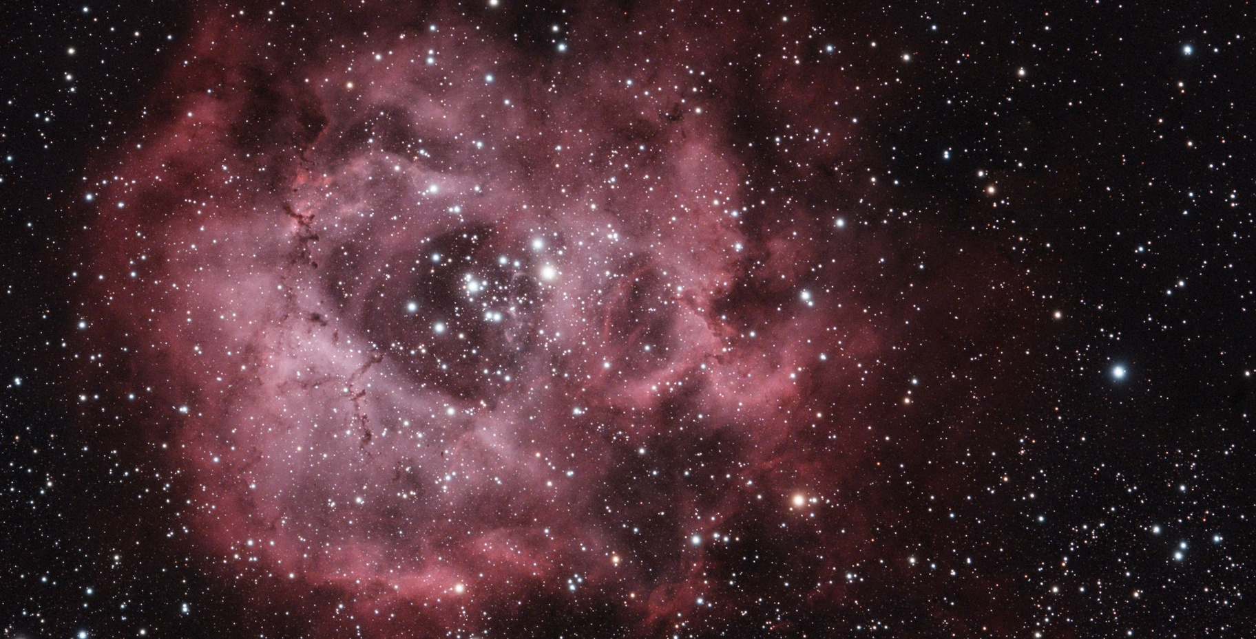 NGC 2239,                                Bertrand Lemasle