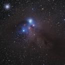 NGC 6726 Corona Australis,                                Don Pearce