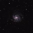 Pinwheel Galaxy M101,                                alex.cutteridge