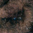 LDN 772 (Nessie among the stars).,                                Ofiuco