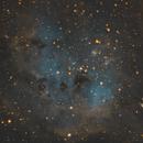IC410 - Tadpoles,                                Sean van Drogen