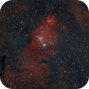 NGC 2264 - The Christmas Tree Nebula,                                Sektor