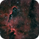 IC1396 - The Elephant's Trunk Nebula - this time with Ha data!,                                Patrick Cosgrove