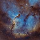 IC1396 Elephant's Trunk nebula,                                SupernovaF1